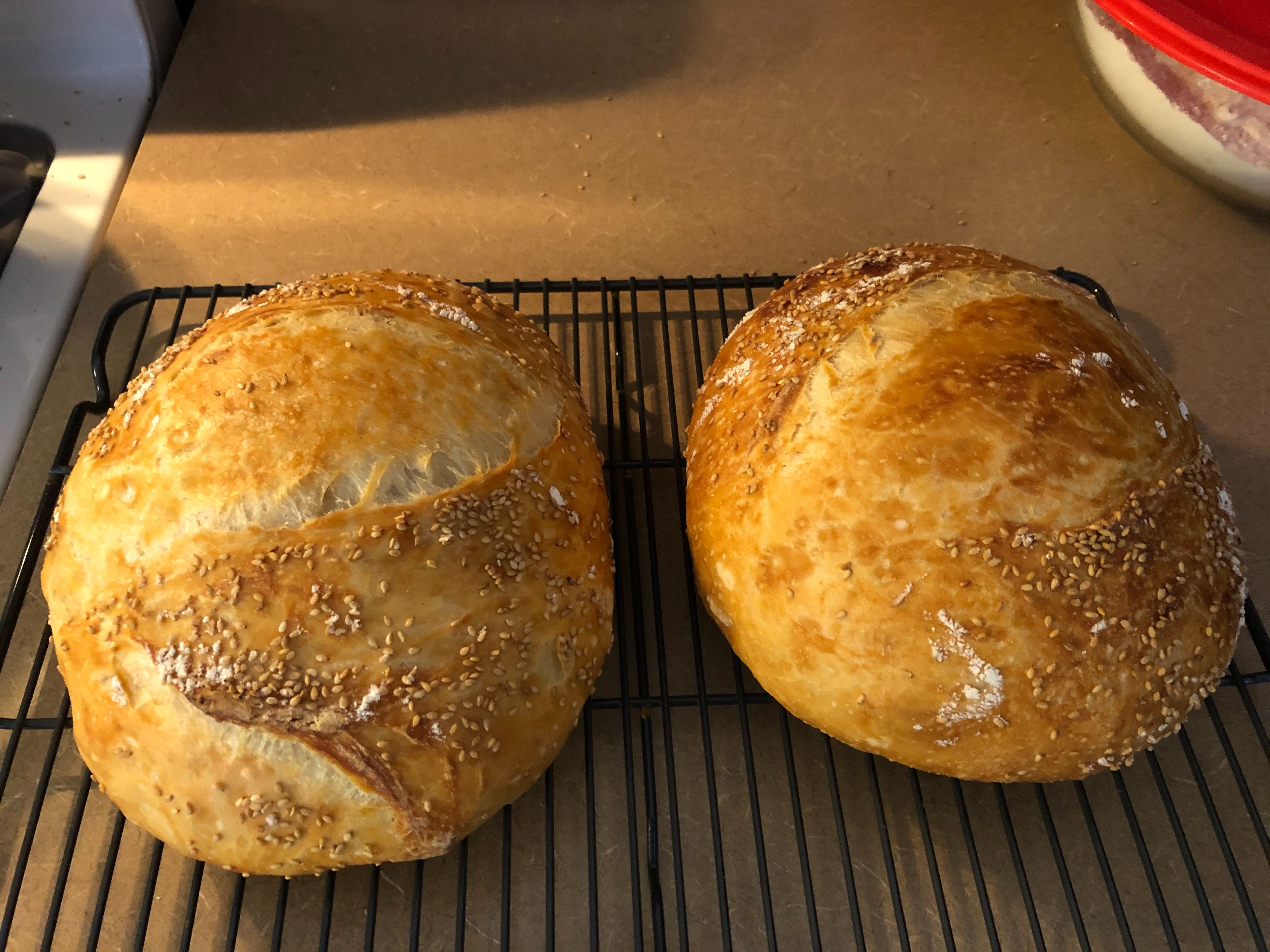 Two fine-looking loaves of freshly cooked bread sitting on a counter