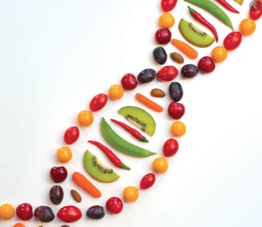 gene food
