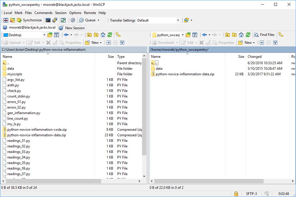 WinSCP file transfer window
