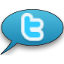 Topics on Twitter Logo