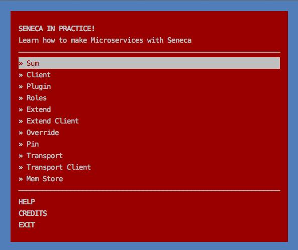Enjoy seneca.js framework!