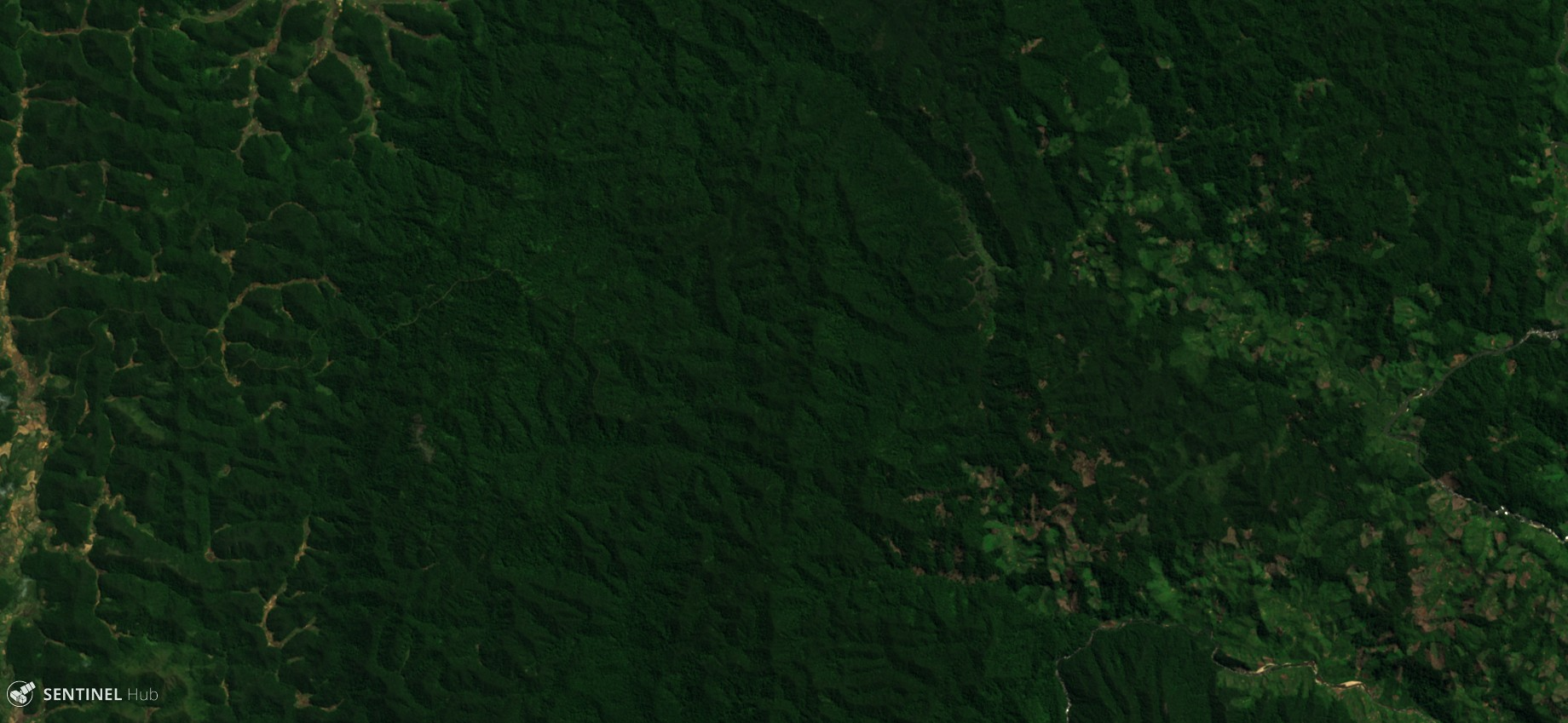 Forest Cut Temporal Detection script over Madagascar forest in 2017