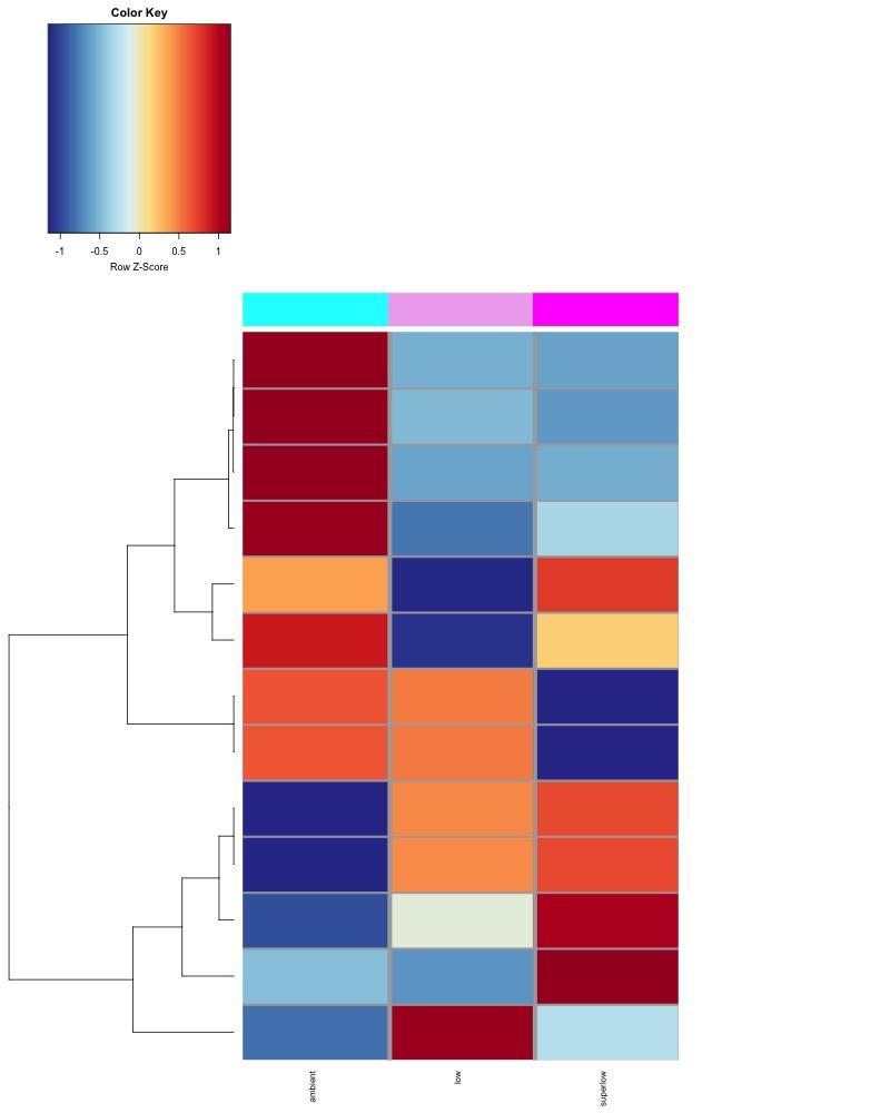 d135_MCmax30DMR_Taov0.1_GROUPmean_heatmap2.jpg