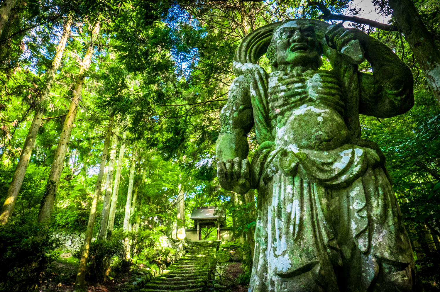 Kunisaki Futago-ji Niomon stone statues covered in moss in a green forest by Athena Lam
