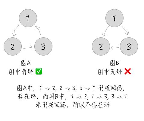 特殊情况4-有向图回路