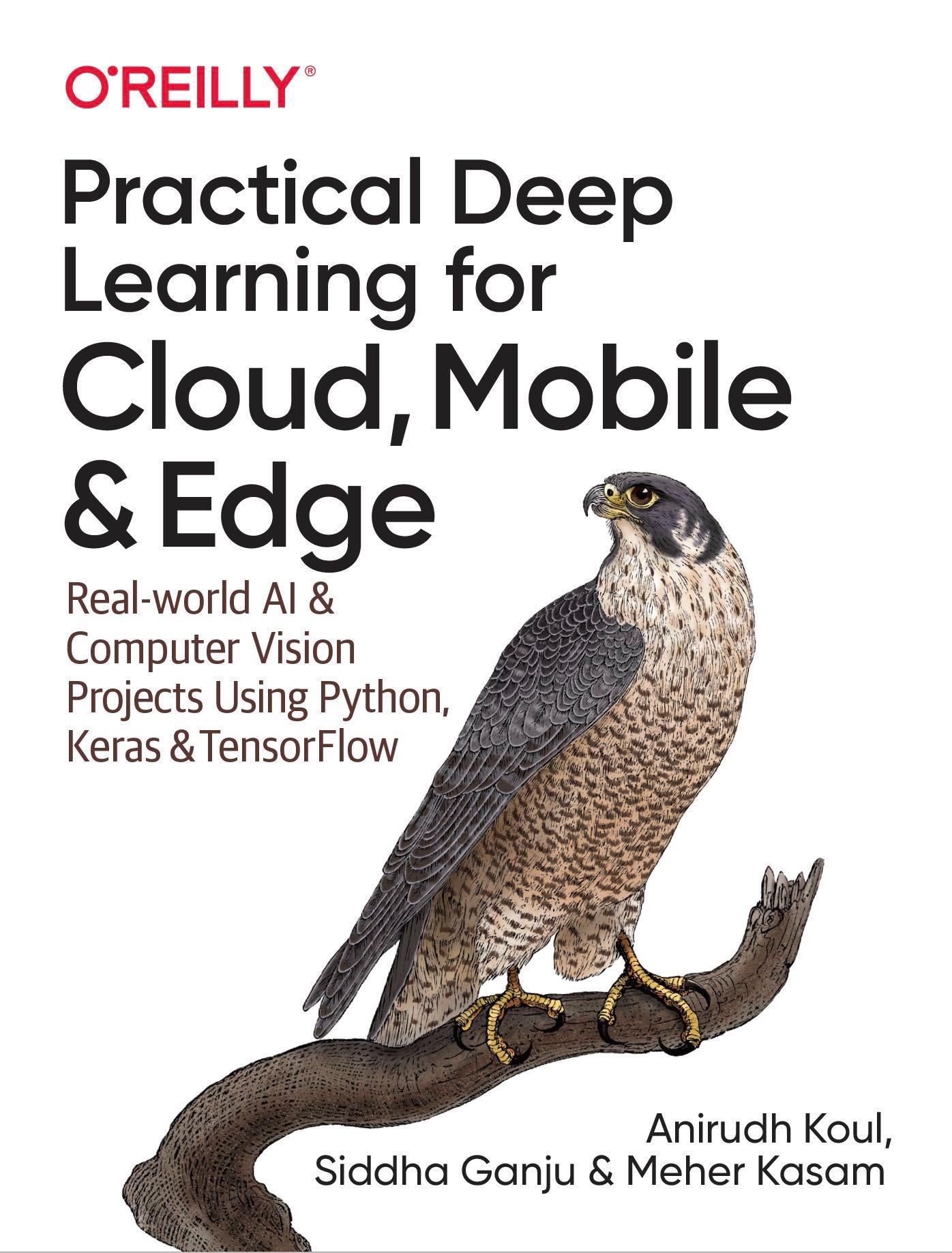 PracticalDL / Practical-Deep-Learning-Book