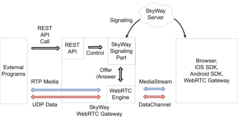 WebRTCを外部プログラムから自由に扱える