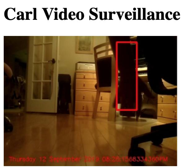 Carl Video Surveillance