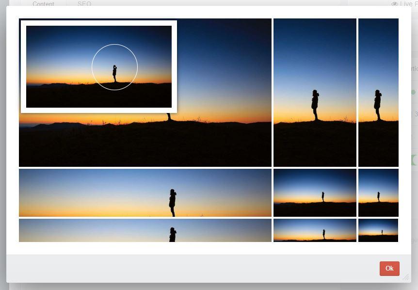 Edit Focus point popup