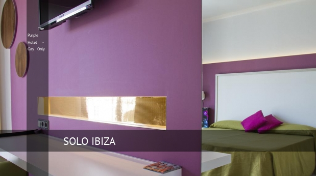 The Purple Hotel - Gay Only barato