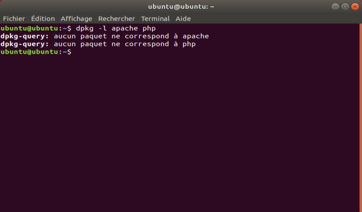 Screenshot de la commande dpkg sous Ubuntu