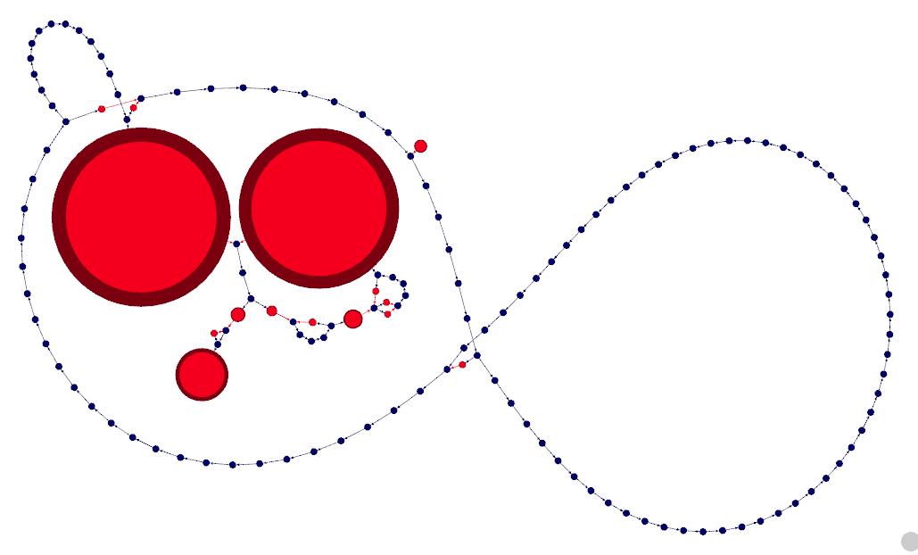 spacegraphcats graph