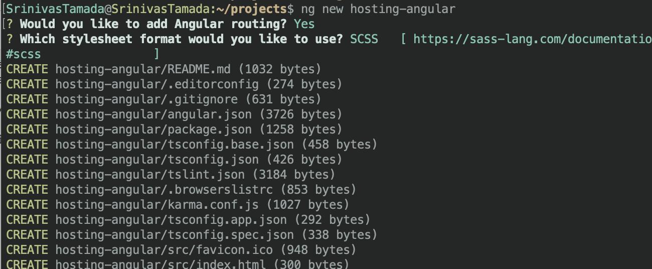 Angular create project
