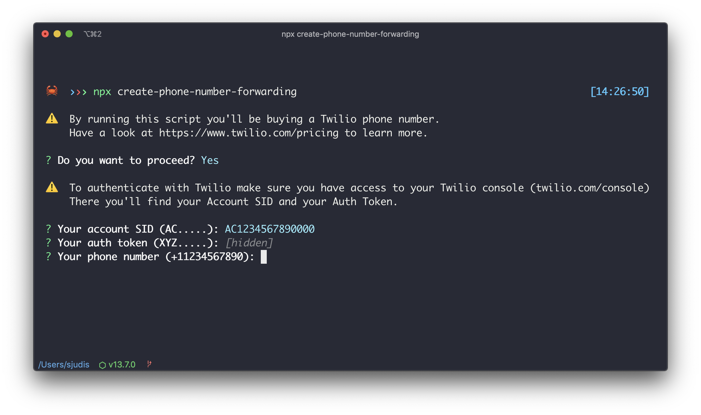 create-phone-number-forwarding in the terminal