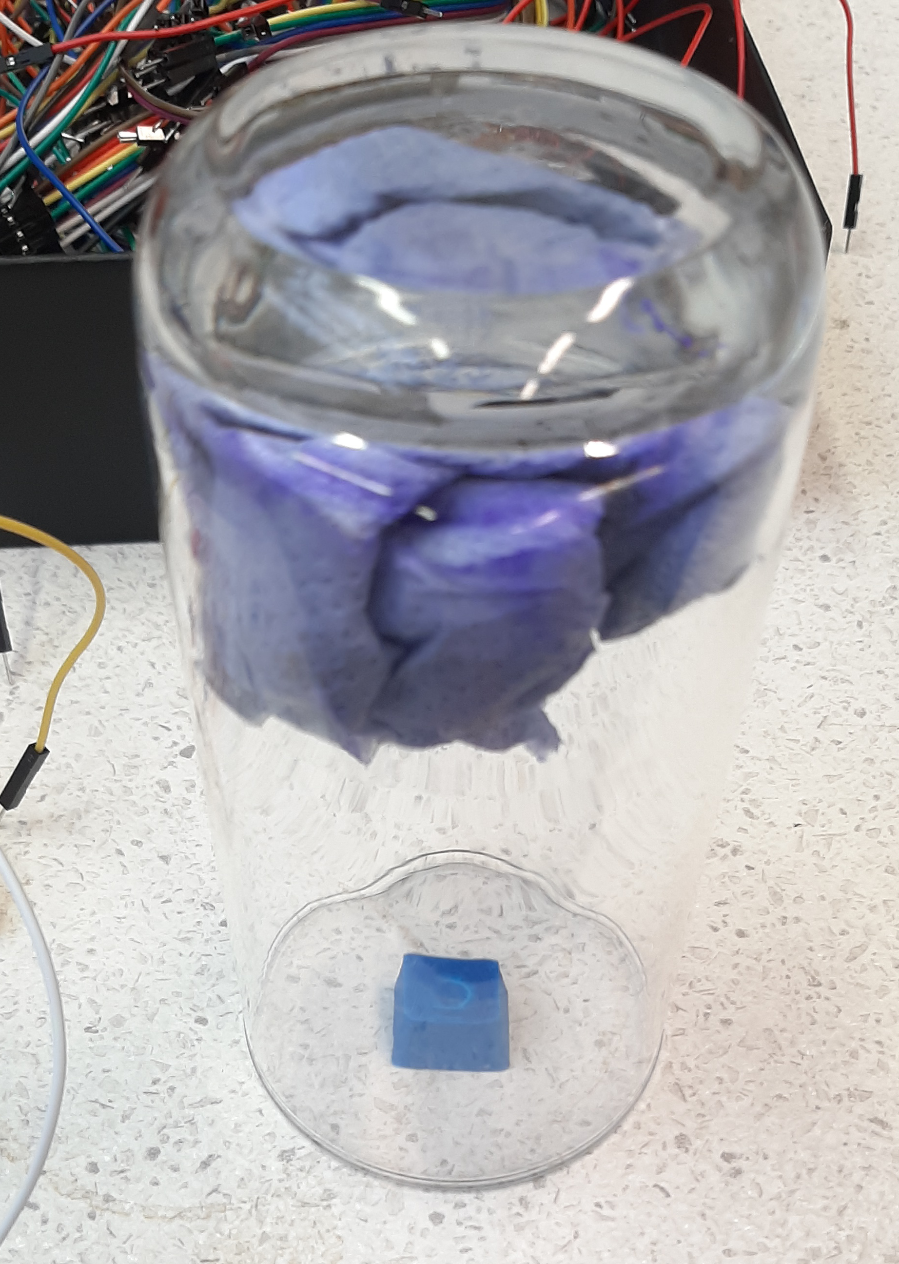 acetone-chamber