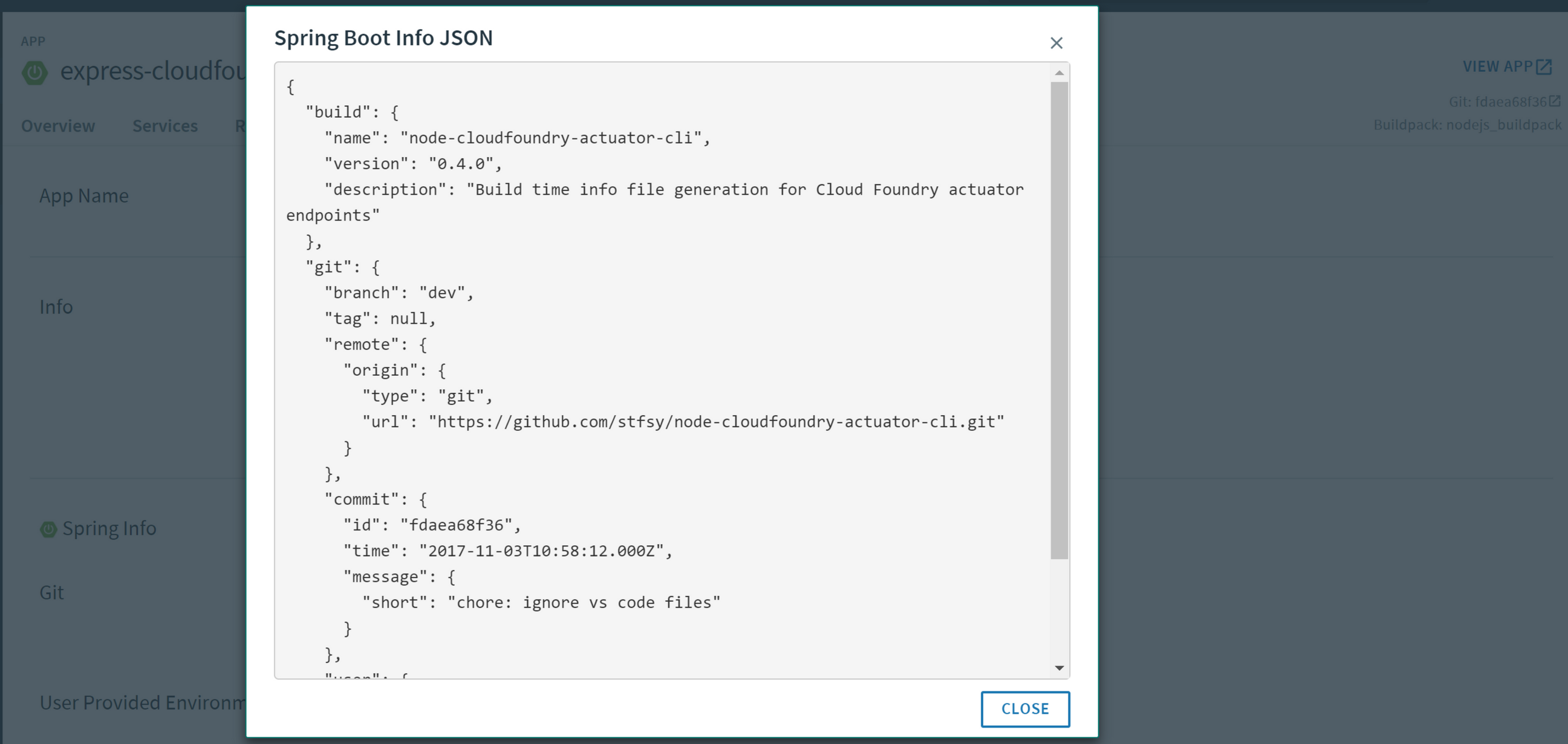 Cloud Foundry App settings with app info popup