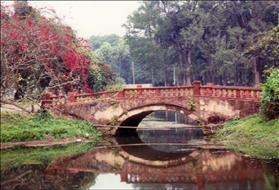 1. Botanical Garden