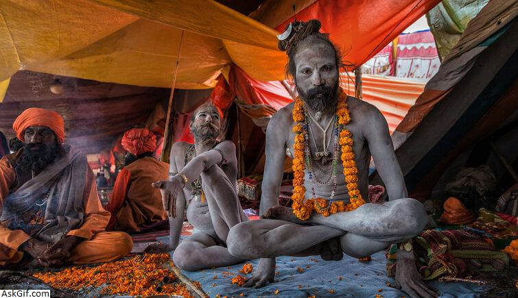 3. Akharas and the Sadhus