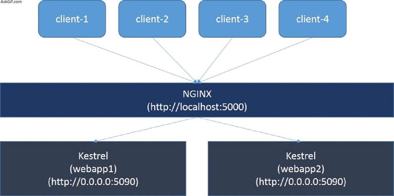 Nginx Reverse Proxy to ASP.NET Core In Separate Docker Containers