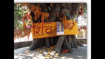 2. Shiv Baba Mandir
