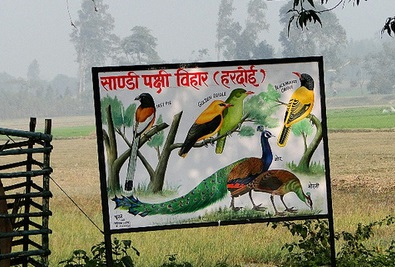 2. Sandi Bird Sanctuary