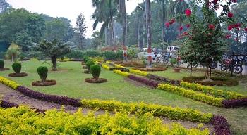 4. Company Garden