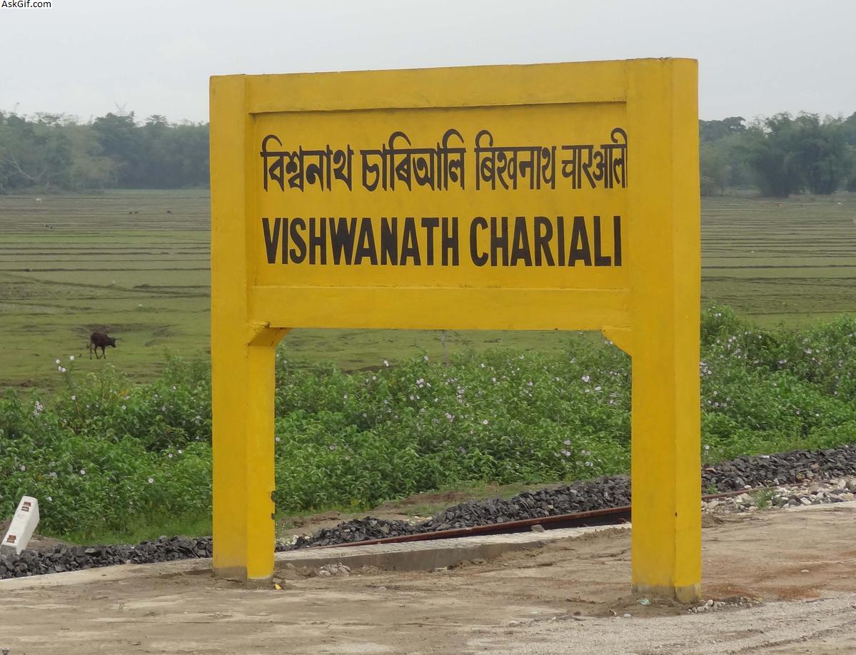 बिश्वनाथ, बिश्वनाथ चाराली में घूमने के लिए शीर्ष स्थान, असम