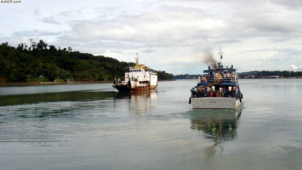 4. Chatham Island
