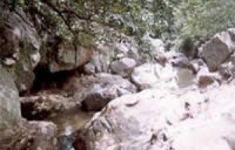 8. DAMUDHARA