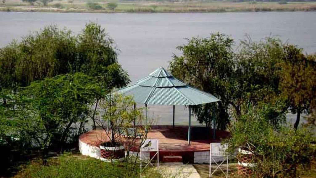 4. Samspur Bird Sanctuary