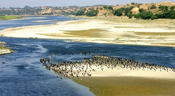 2. National Chambal Sanctuary