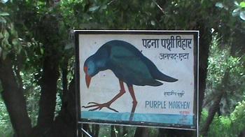 1. Patna Bird Sanctuary