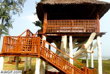 10. Accommodation