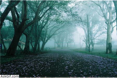 4. Horsley Hills