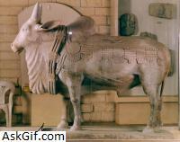 1. Amaravathi Museum