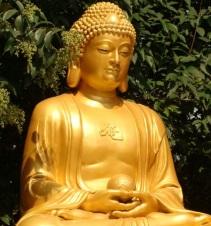 4. Buddha statue sankasia