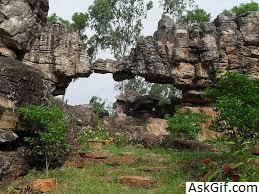 6. Sri Venkateshwara National Park