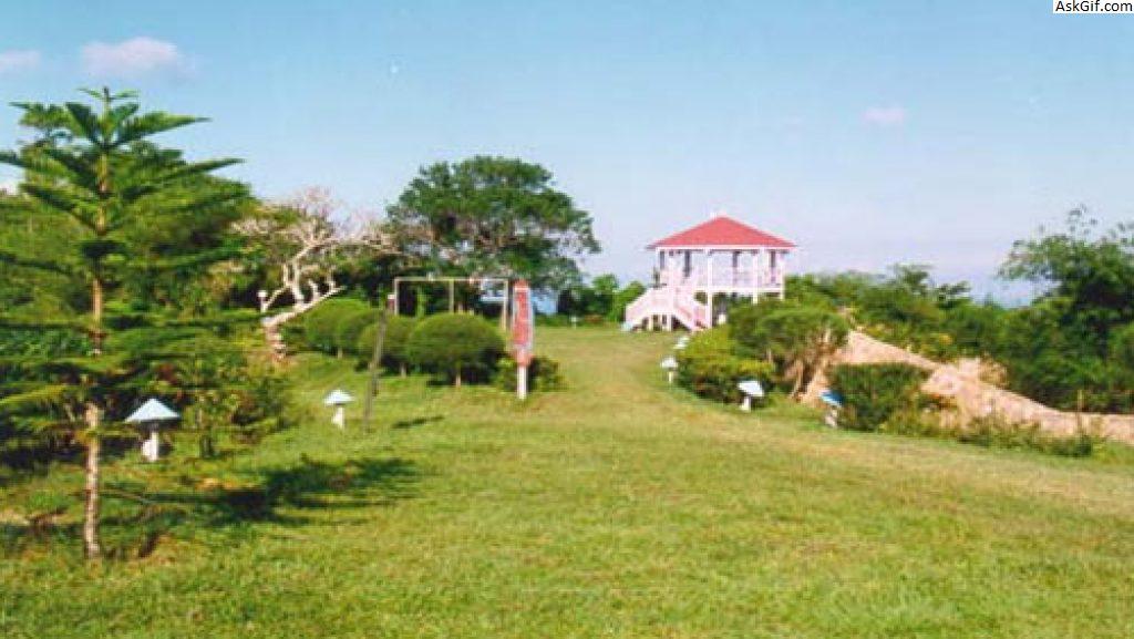 8. Mount Harriet