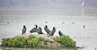 2. Lakh Bahosi Bird Sanctuary
