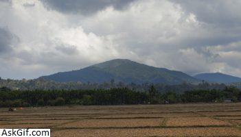 9. Saddle Peak