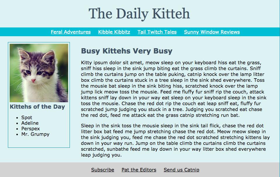 daily kitteh