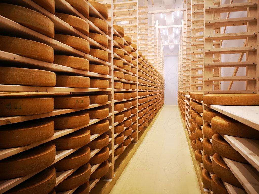 Климатические камеры для созревания сыра. Сыроваренный завод