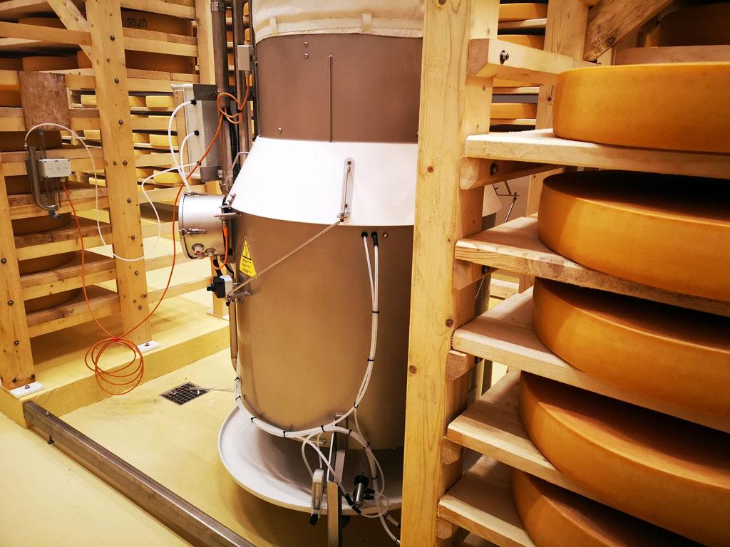 Камеры для сыров