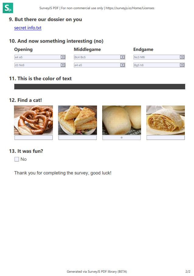 SurveyJS PDF Exporter example page 2