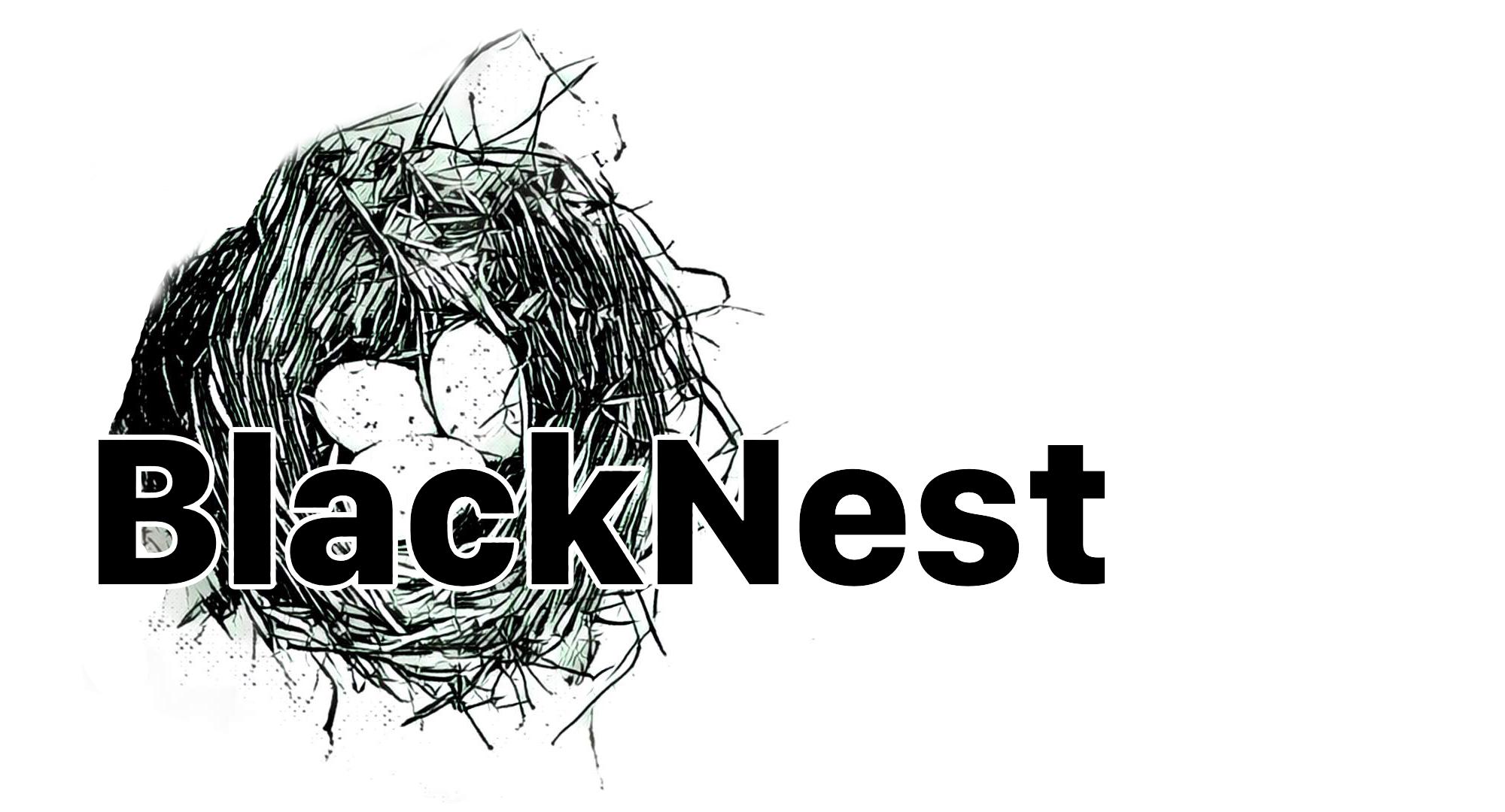 blacknest logo