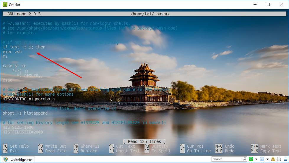 WSL+cmder+oh-my-zsh美化win10命令工具(terminal) | 踏浪