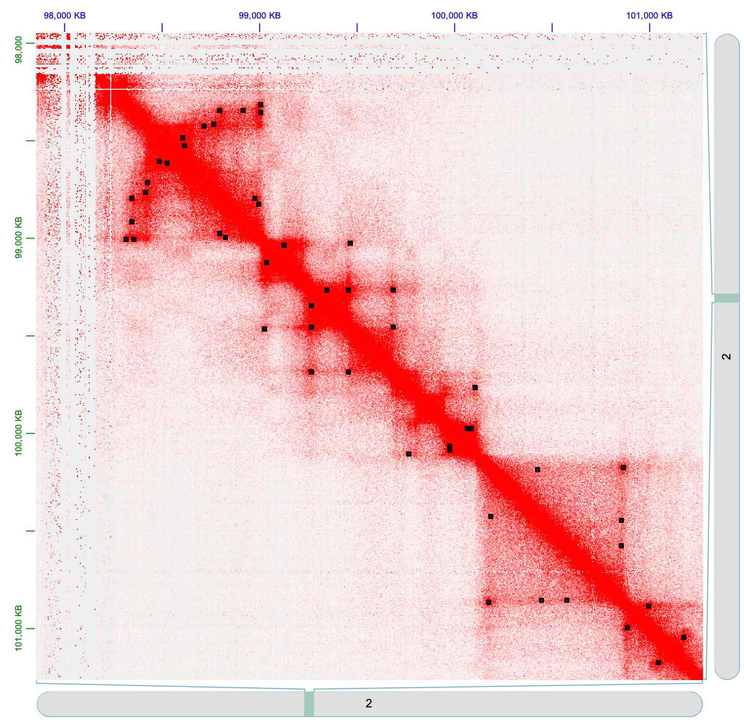 Predicted loops from model trained on H3K27ac HiChIP interactions