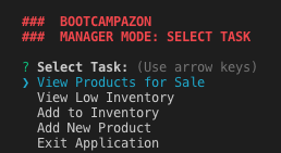 Image of BOOTCAMPAZON