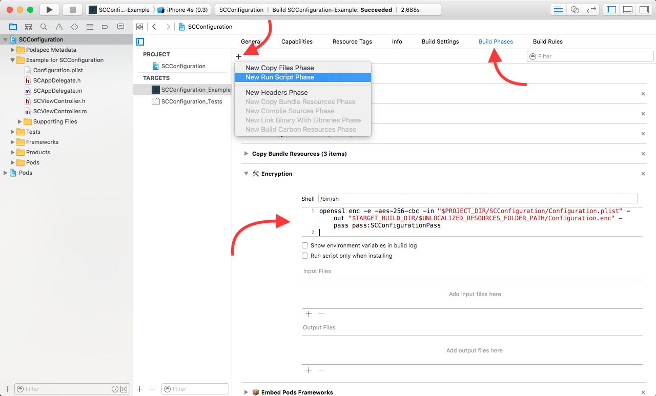 Add custom Run Script