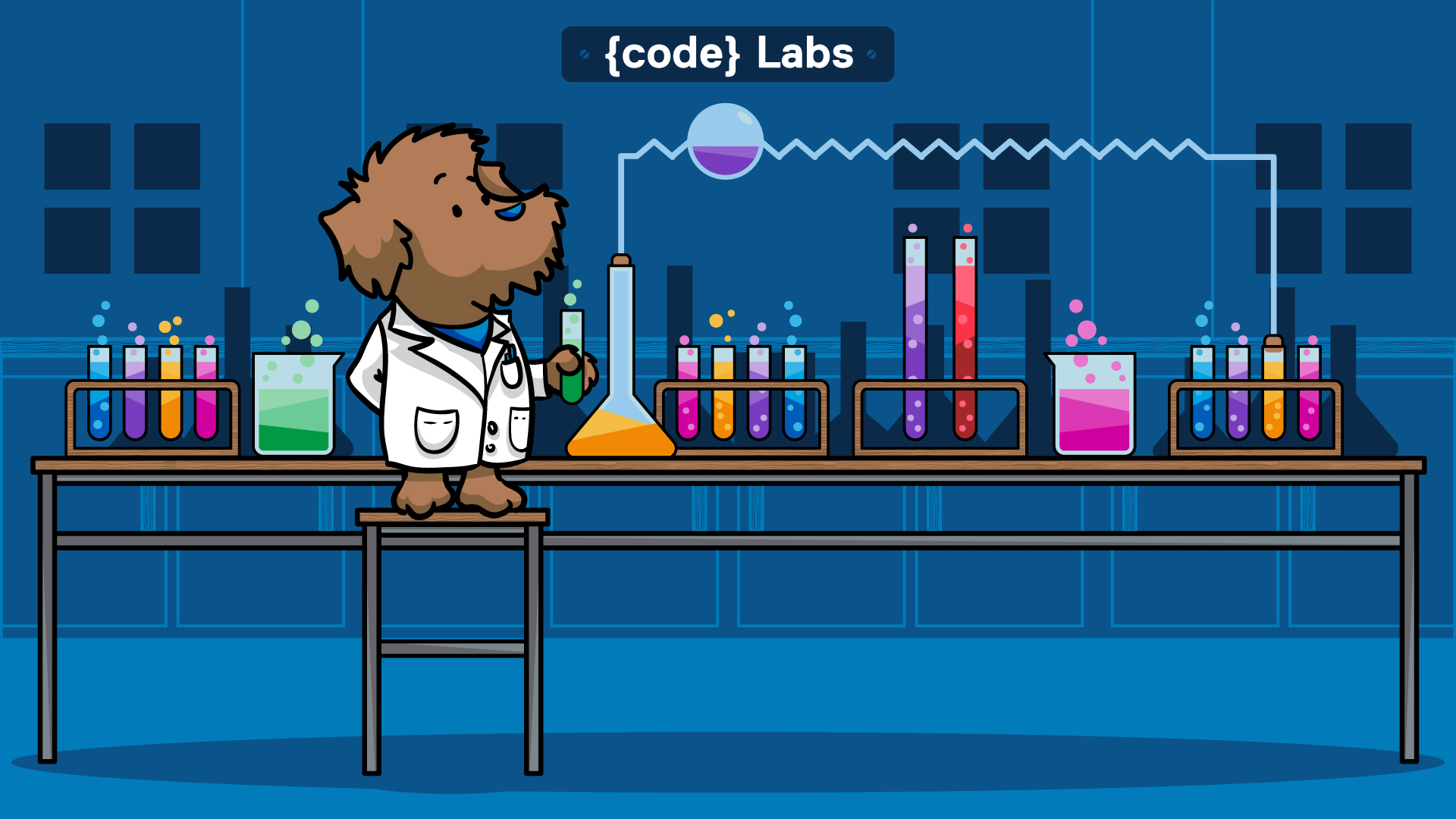 {code} Labs